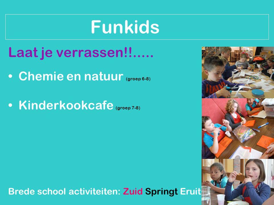 Brede school activiteiten: Zuid Springt Eruit Funkids Laat je verrassen!!..... Chemie en natuur (groep 6-8) Kinderkookcafe (groep 7-8)