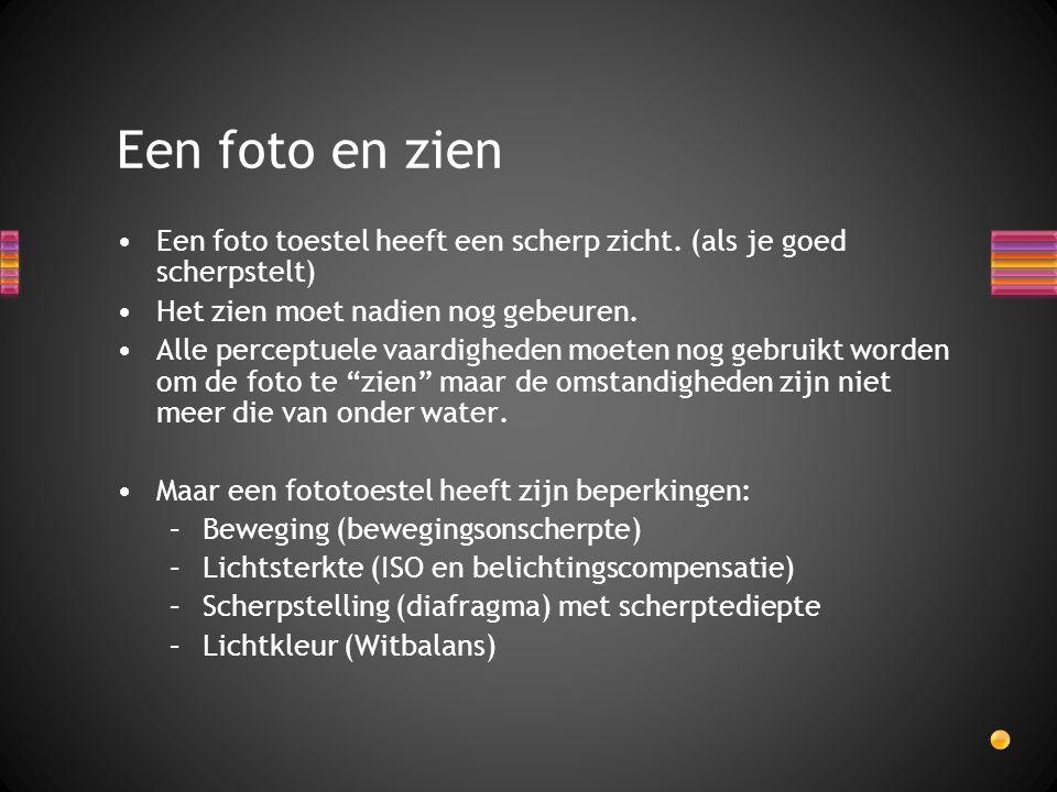 Een foto toestel heeft een scherp zicht. (als je goed scherpstelt) Het zien moet nadien nog gebeuren. Alle perceptuele vaardigheden moeten nog gebruik