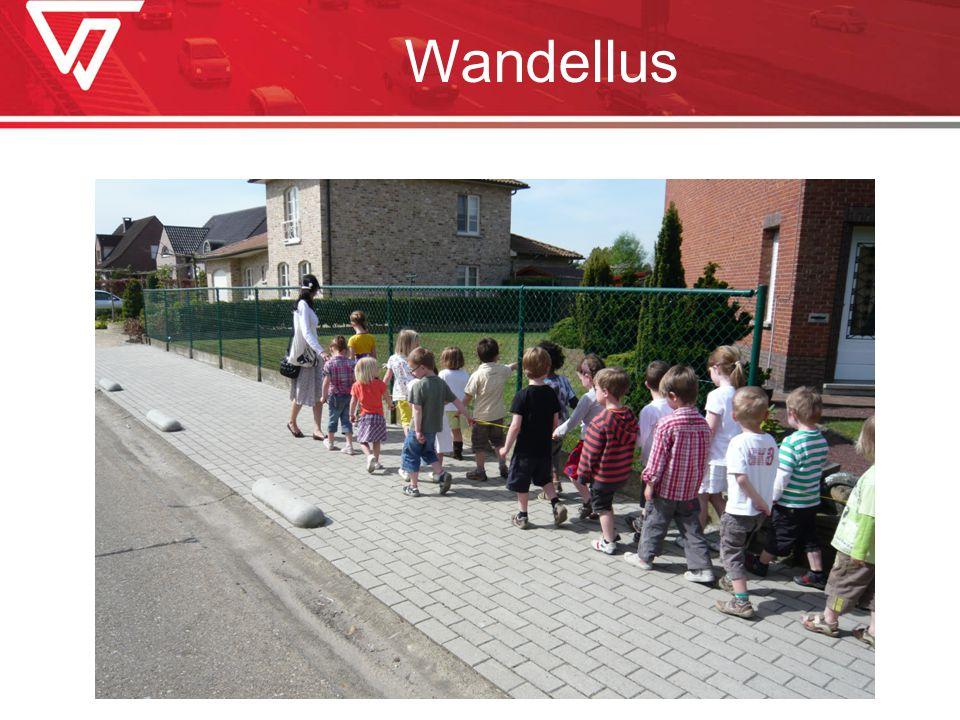 Wandellus