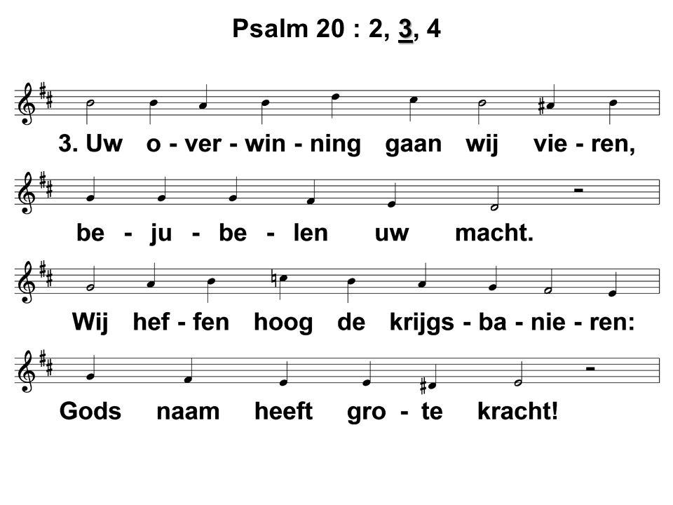 3 Psalm 20 : 2, 3, 4