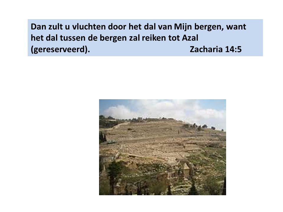 Dan zult u vluchten door het dal van Mijn bergen, want het dal tussen de bergen zal reiken tot Azal (gereserveerd). Zacharia 14:5