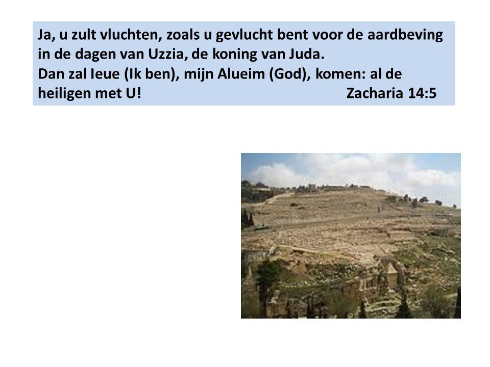 Ja, u zult vluchten, zoals u gevlucht bent voor de aardbeving in de dagen van Uzzia, de koning van Juda. Dan zal Ieue (Ik ben), mijn Alueim (God), kom