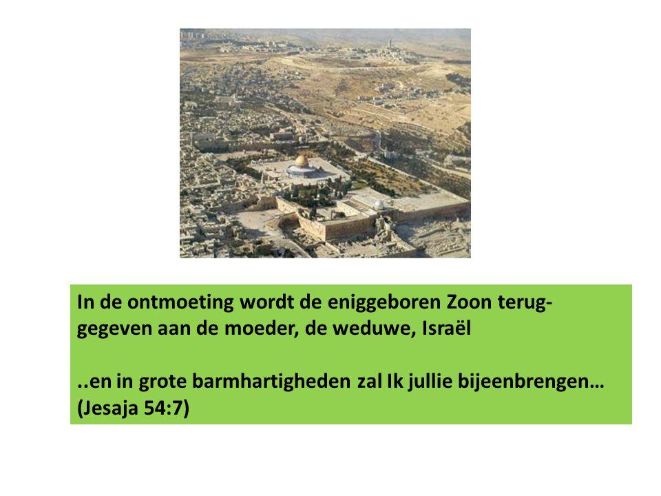 In de ontmoeting wordt de eniggeboren Zoon terug- gegeven aan de moeder, de weduwe, Israël..en in grote barmhartigheden zal Ik jullie bijeenbrengen… (