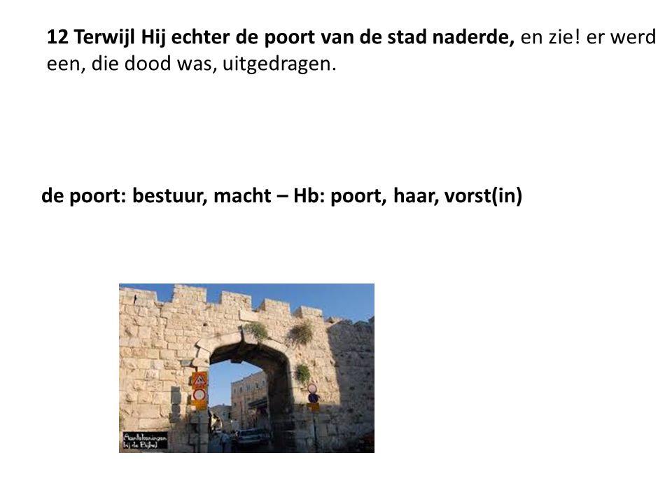 12 Terwijl Hij echter de poort van de stad naderde, en zie! er werd een, die dood was, uitgedragen. de poort: bestuur, macht – Hb: poort, haar, vorst(