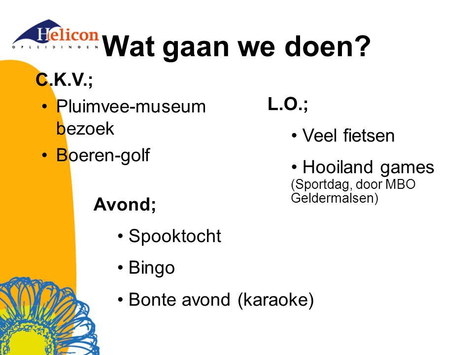 Wat gaan we doen? C.K.V.; Pluimvee-museum bezoek Boeren-golf L.O.; Veel fietsen Hooiland games (Sportdag, door MBO Geldermalsen) Avond; Spooktocht Bin