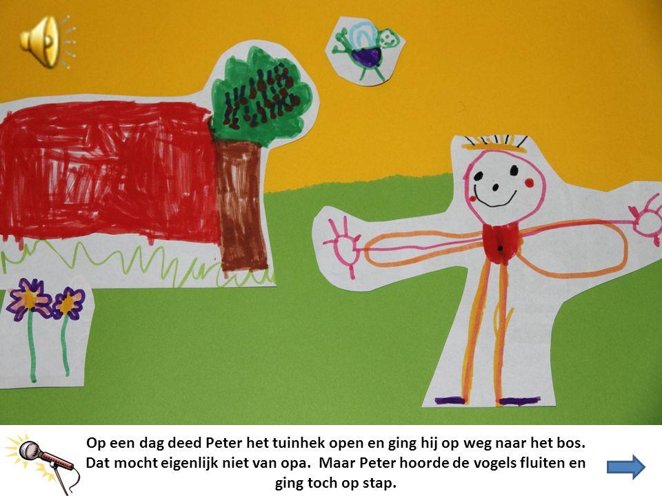 Op een dag deed Peter het tuinhek open en ging hij op weg naar het bos. Dat mocht eigenlijk niet van opa. Maar Peter hoorde de vogels fluiten en ging