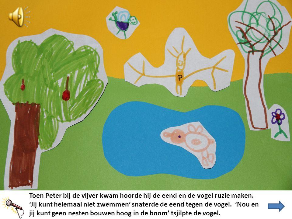 Toen Peter bij de vijver kwam hoorde hij de eend en de vogel ruzie maken. 'Jij kunt helemaal niet zwemmen' snaterde de eend tegen de vogel. 'Nou en ji