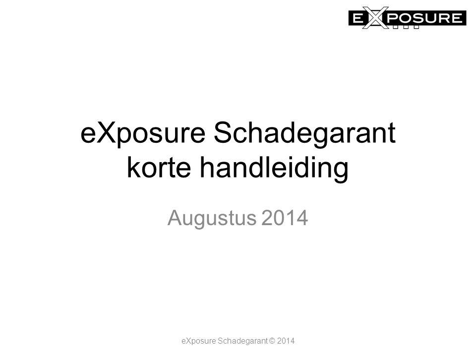 Het beginscherm eXposure Schadegarant © 2014 View- niveaus Huidige selecties Tab- bladen Selectie- velden divers Selectie- velden perioden Grafieken,meters of tabellen
