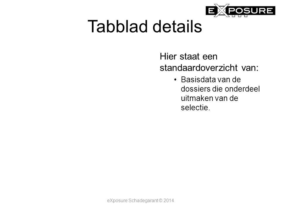Tabblad details eXposure Schadegarant © 2014 Hier staat een standaardoverzicht van: Basisdata van de dossiers die onderdeel uitmaken van de selectie.
