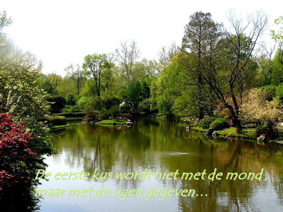 Wees een ZON voor je medemens : Het leven zal zoveel mooier zijn…