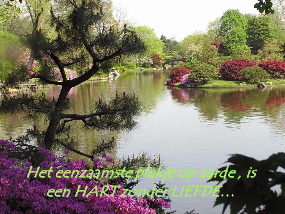 Haat kan geen haat verdrijven ; enkel LIEFDE is daartoe in staat