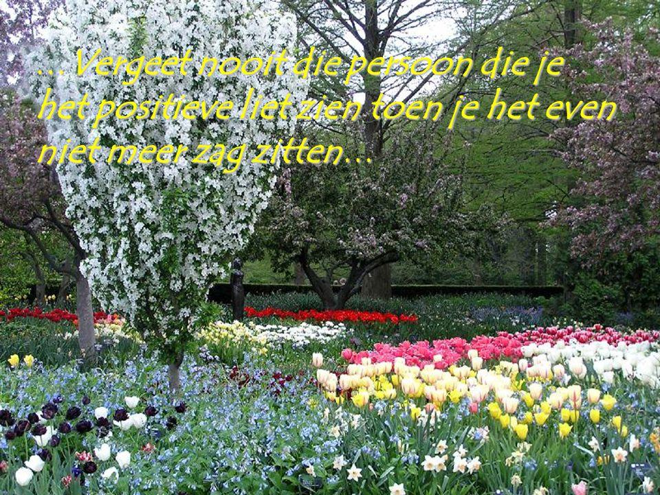Een mooie toekomst zal altijd afhangen van de noodzaak om het verleden te vergeten…