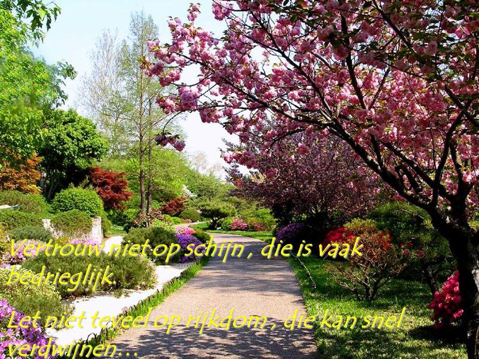 Leef het leven volop, haal alles uit het leven, zodat je altijd kunt lachen ondanks er soms tranen zijn…