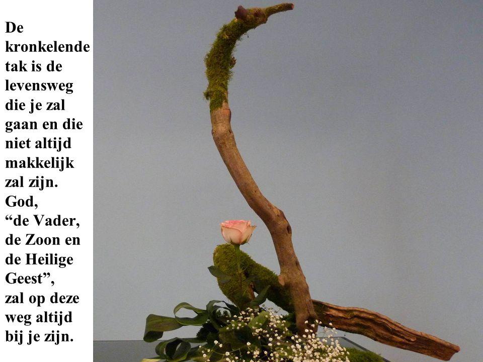 """De kronkelende tak is de levensweg die je zal gaan en die niet altijd makkelijk zal zijn. God, """"de Vader, de Zoon en de Heilige Geest"""", zal op deze we"""