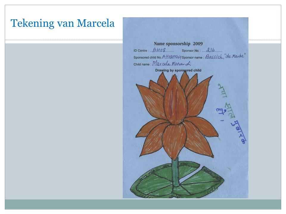 Tekening van Marcela