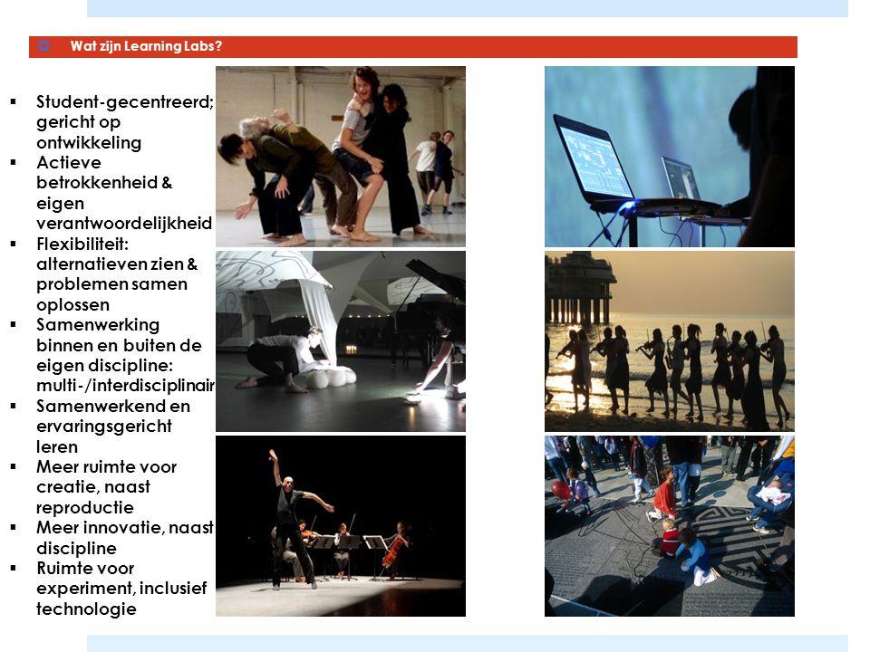  Wat zijn Learning Labs?  Student-gecentreerd; gericht op ontwikkeling  Actieve betrokkenheid & eigen verantwoordelijkheid  Flexibiliteit: alterna