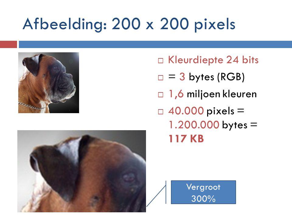 Afbeelding: 200 x 200 pixels  Kleurdiepte 24 bits  = 3 bytes (RGB)  1,6 miljoen kleuren  40.000 pixels = 1.200.000 bytes = 117 KB Vergroot 300%