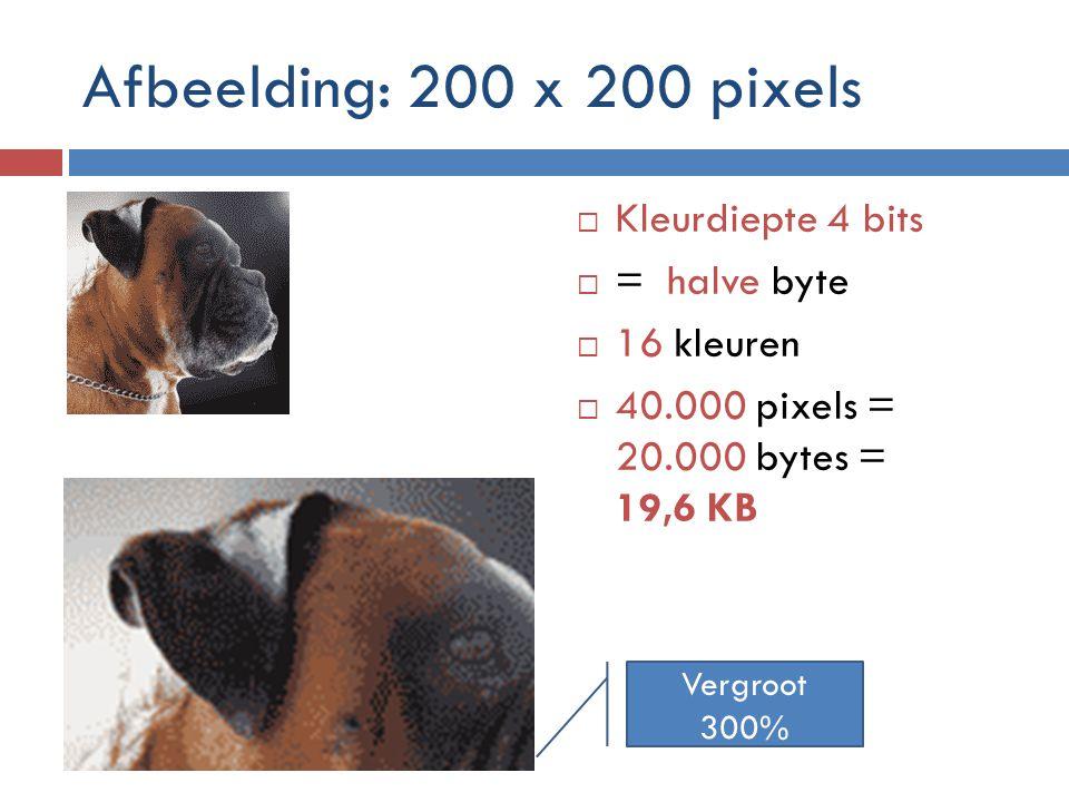 Afbeelding: 200 x 200 pixels  Kleurdiepte 4 bits  = halve byte  16 kleuren  40.000 pixels = 20.000 bytes = 19,6 KB Vergroot 300%