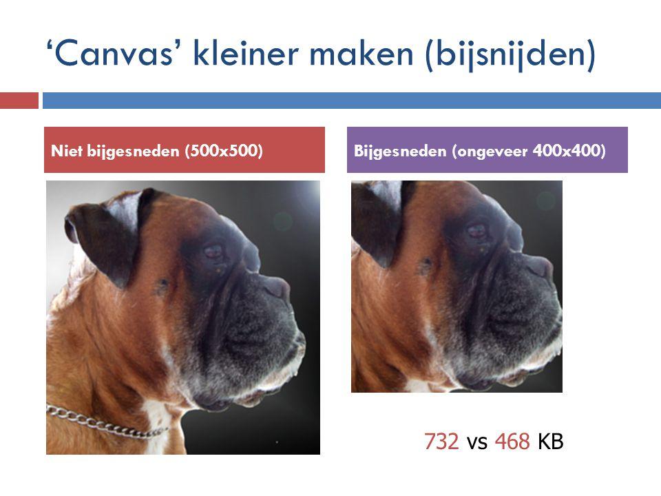 'Canvas' kleiner maken (bijsnijden) Niet bijgesneden (500x500)Bijgesneden (ongeveer 400x400) 732 vs 468 KB