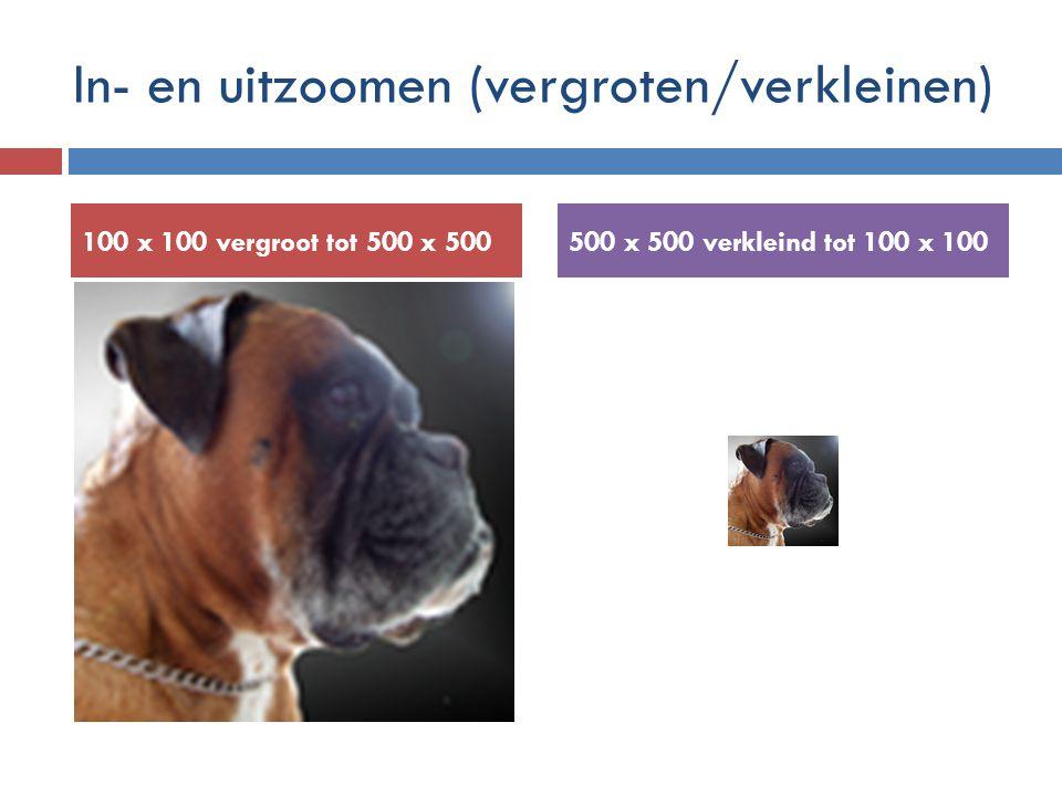 In- en uitzoomen (vergroten/verkleinen) 100 x 100 vergroot tot 500 x 500500 x 500 verkleind tot 100 x 100