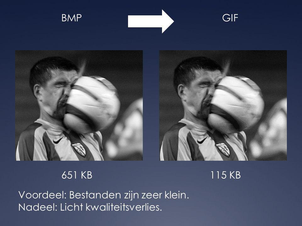 JPEGPNG Voordeel: Geen kwaliteitsverlies.Nadeel: Wordt niet door alle browsers ondersteund.