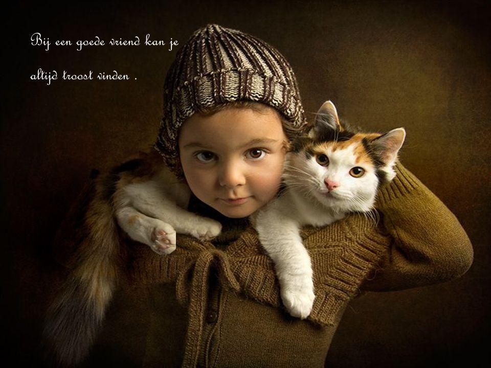 Bij een goede vriend kan je altijd troost vinden.