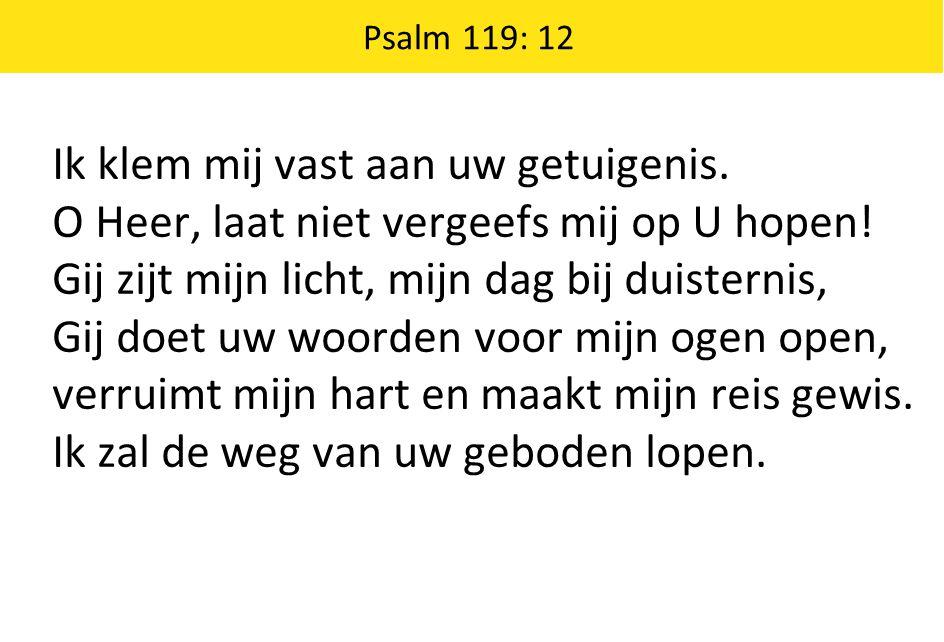 Psalm 119: 12 Ik klem mij vast aan uw getuigenis. O Heer, laat niet vergeefs mij op U hopen! Gij zijt mijn licht, mijn dag bij duisternis, Gij doet uw