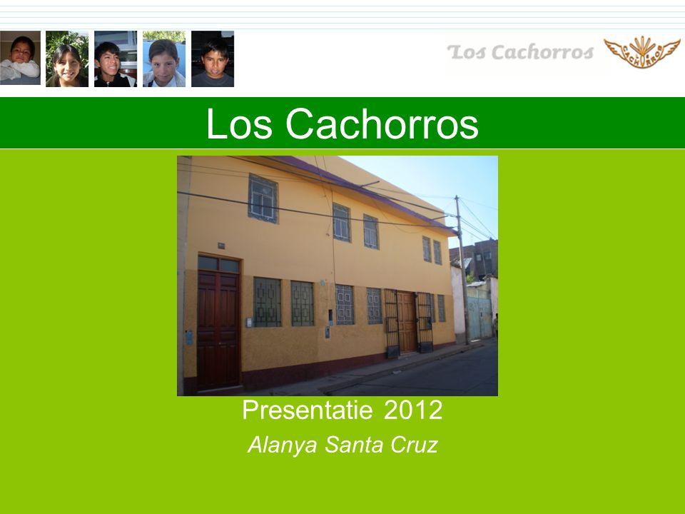 Los Cachorros Presentatie 2012 Alanya Santa Cruz