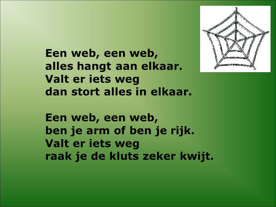Een web, een web, alles hangt aan elkaar.Valt er iets weg dan stort alles in elkaar.