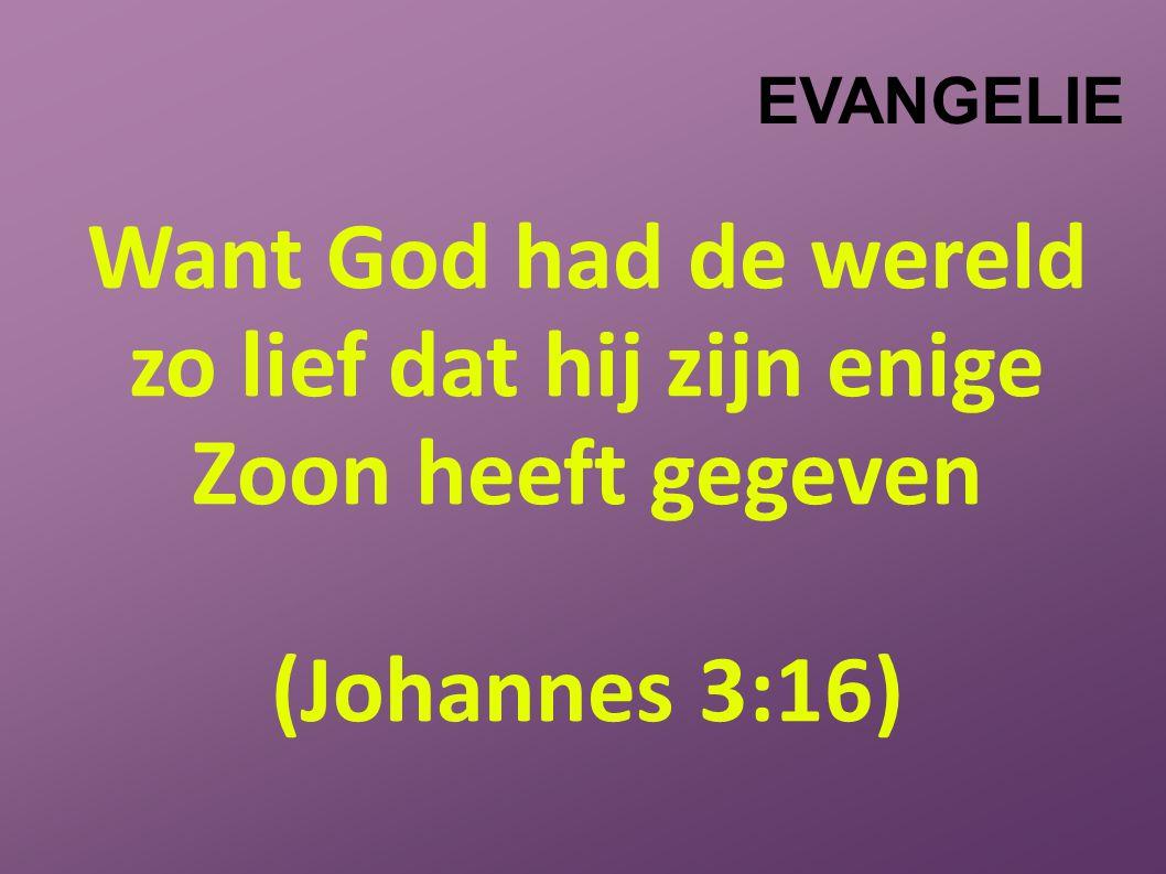 EVANGELIE Want God had de wereld zo lief dat hij zijn enige Zoon heeft gegeven (Johannes 3:16)