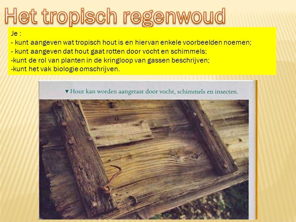 Je : - kunt aangeven wat tropisch hout is en hiervan enkele voorbeelden noemen; - kunt aangeven dat hout gaat rotten door vocht en schimmels; -kunt de