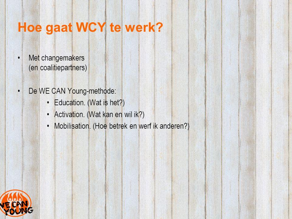 Hoe gaat WCY te werk. Met changemakers (en coalitiepartners) De WE CAN Young-methode: Education.