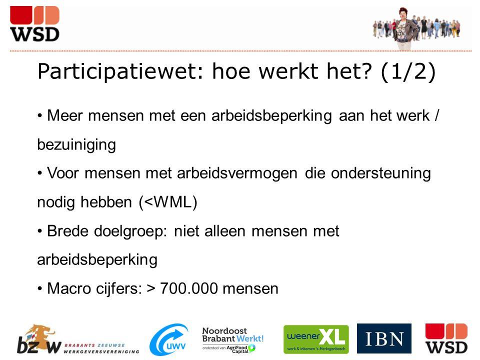 Participatiewet: hoe werkt het? (1/2) Meer mensen met een arbeidsbeperking aan het werk / bezuiniging Voor mensen met arbeidsvermogen die ondersteunin