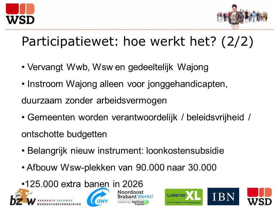 Participatiewet: hoe werkt het? (2/2) Vervangt Wwb, Wsw en gedeeltelijk Wajong Instroom Wajong alleen voor jonggehandicapten, duurzaam zonder arbeidsv