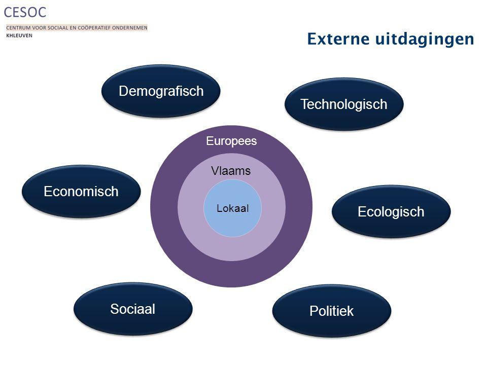 Externe uitdagingen Europees Vlaams Lokaal Demografisch Economisch Sociaal Technologisch Ecologisch Politiek