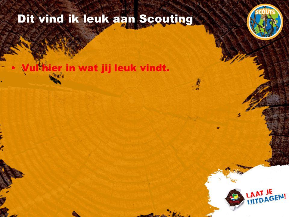 Dit vind ik leuk aan Scouting Vul hier in wat jij leuk vindt.