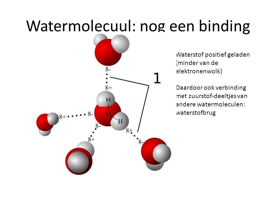 Watermolecuul: nog een binding Waterstof positief geladen (minder van de elektronenwolk) Daardoor ook verbinding met zuurstof-deeltjes van andere wate