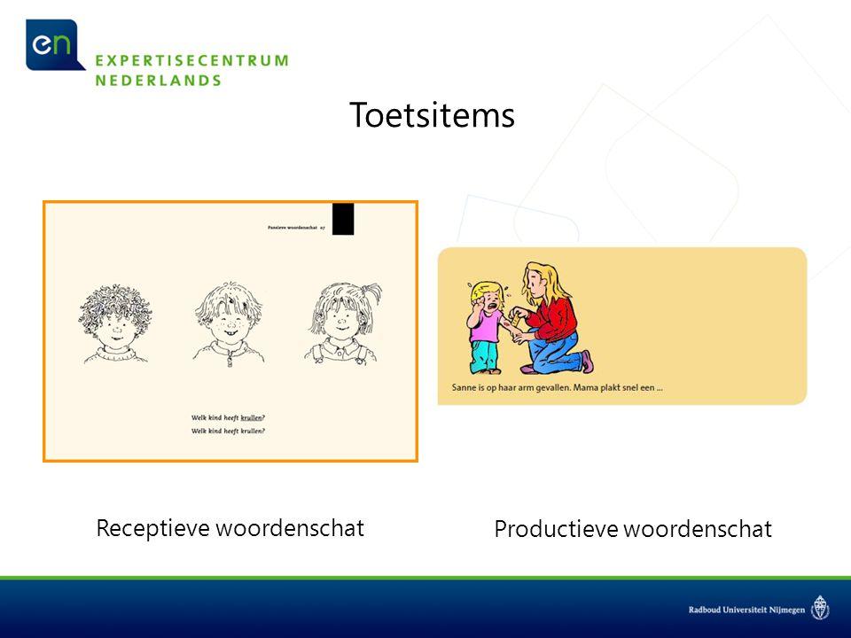 Toetsitems Receptieve woordenschat Productieve woordenschat