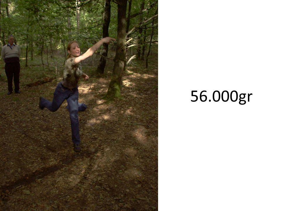 56.000gr