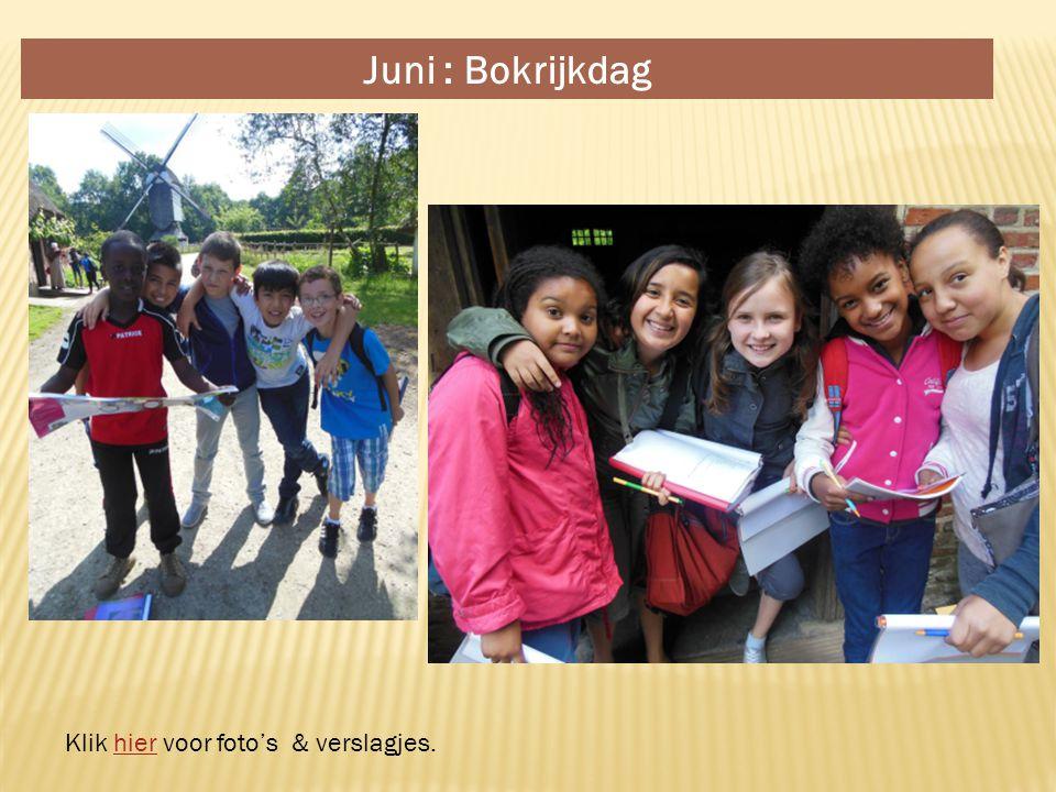 Juni : Bokrijkdag Klik hier voor foto's & verslagjes.hier