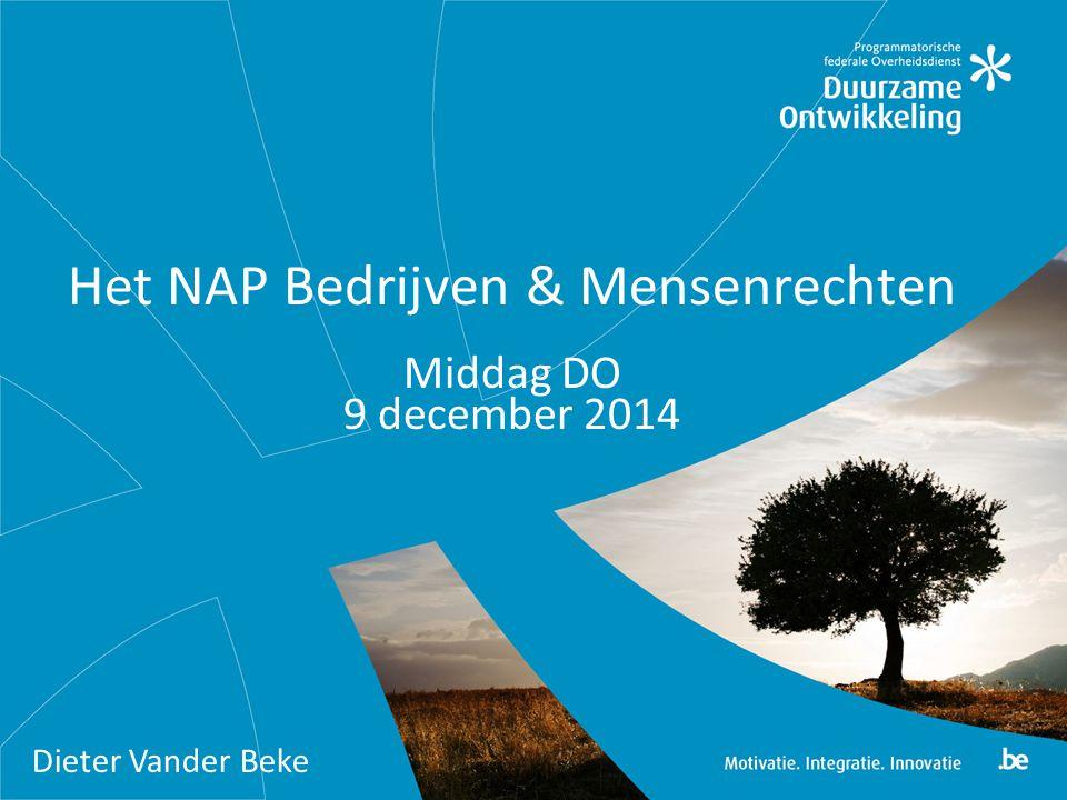 Het NAP Bedrijven & Mensenrechten Middag DO 9 december 2014 Dieter Vander Beke