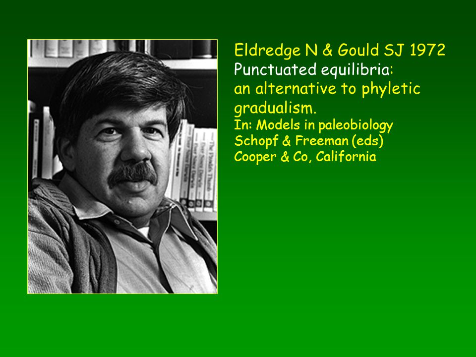 Eldredge N & Gould SJ 1972 Punctuated equilibria: an alternative to phyletic gradualism. In: Models in paleobiology Schopf & Freeman (eds) Cooper & Co