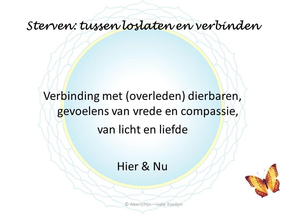 Sterven: tussen loslaten en verbinden © Weerschijn – Ineke Koedam Verbinding met (overleden) dierbaren, gevoelens van vrede en compassie, van licht en liefde Hier & Nu