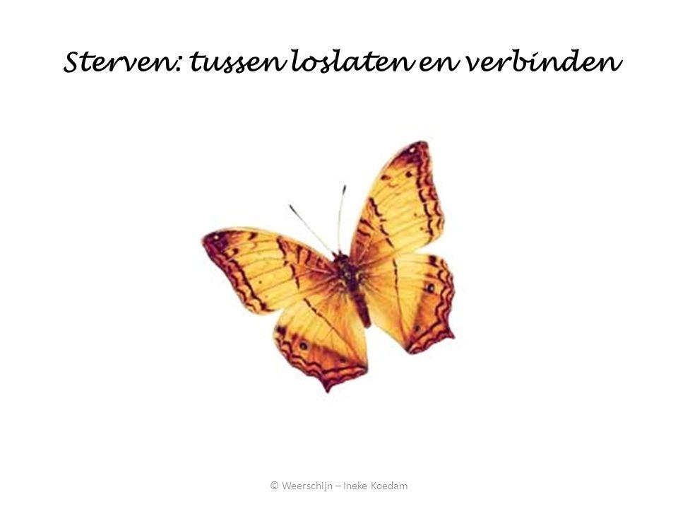 Sterven: tussen loslaten en verbinden © Weerschijn – Ineke Koedam