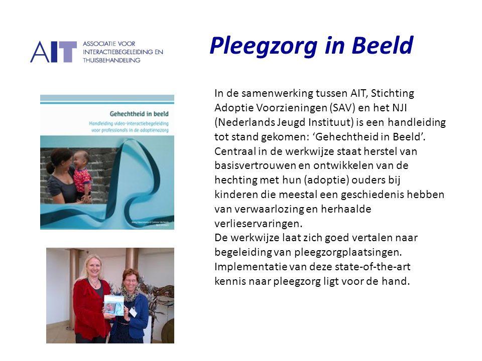 P Pleegzorg in Beeld In de samenwerking tussen AIT, Stichting Adoptie Voorzieningen (SAV) en het NJI (Nederlands Jeugd Instituut) is een handleiding t