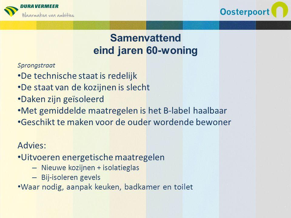 Sprongstraat De technische staat is redelijk De staat van de kozijnen is slecht Daken zijn geïsoleerd Met gemiddelde maatregelen is het B-label haalba