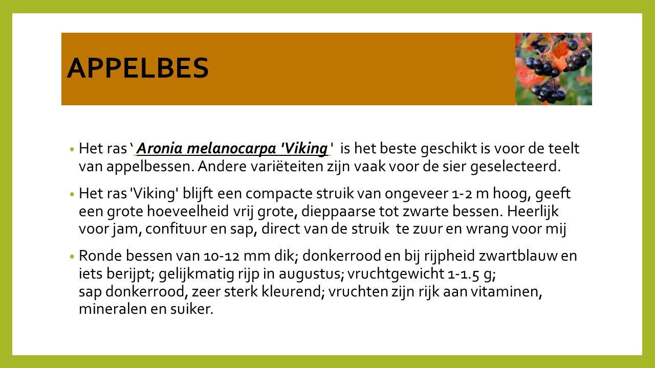 APPELBES Het ras ' Aronia melanocarpa 'Viking ' is het beste geschikt is voor de teelt van appelbessen. Andere variëteiten zijn vaak voor de sier gese