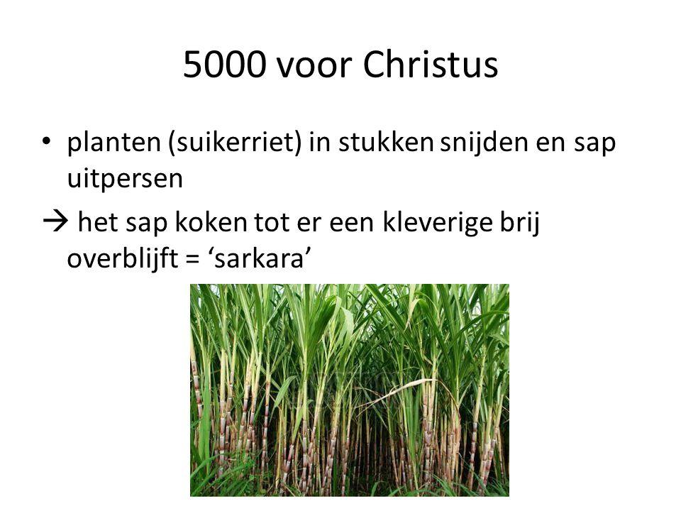 5000 voor Christus planten (suikerriet) in stukken snijden en sap uitpersen  het sap koken tot er een kleverige brij overblijft = 'sarkara'
