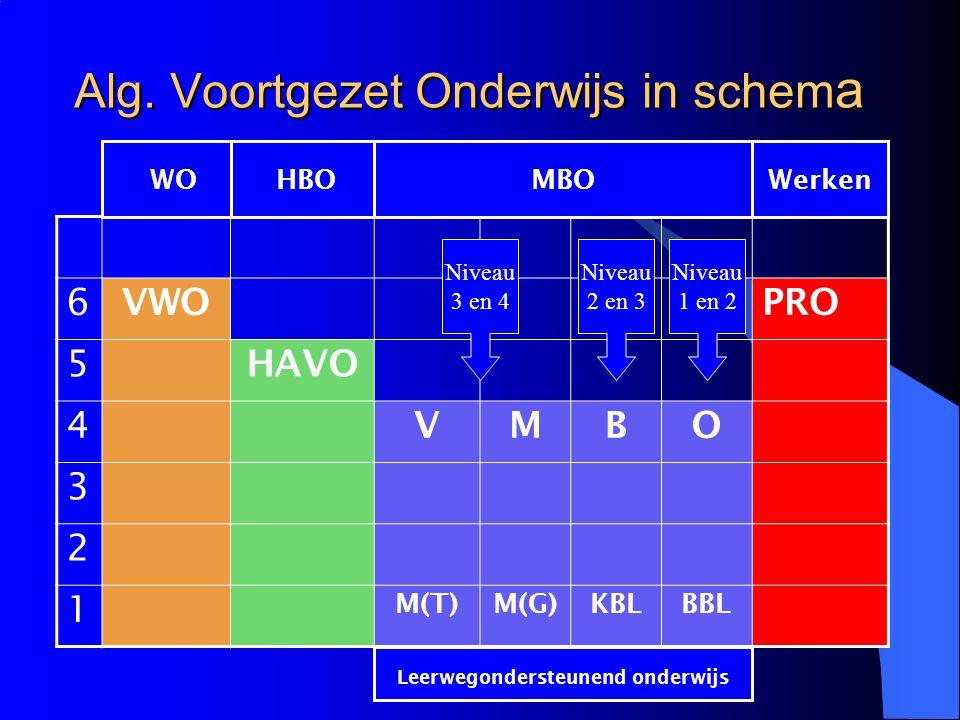 Alg. Voortgezet Onderwijs in schem a 6 VWOPRO 5 HAVO 4 VMBO 3 2 1 M(T)M(G)KBLBBL WOHBOMBOWerken Leerwegondersteunend onderwijs Niveau 3 en 4 Niveau 2