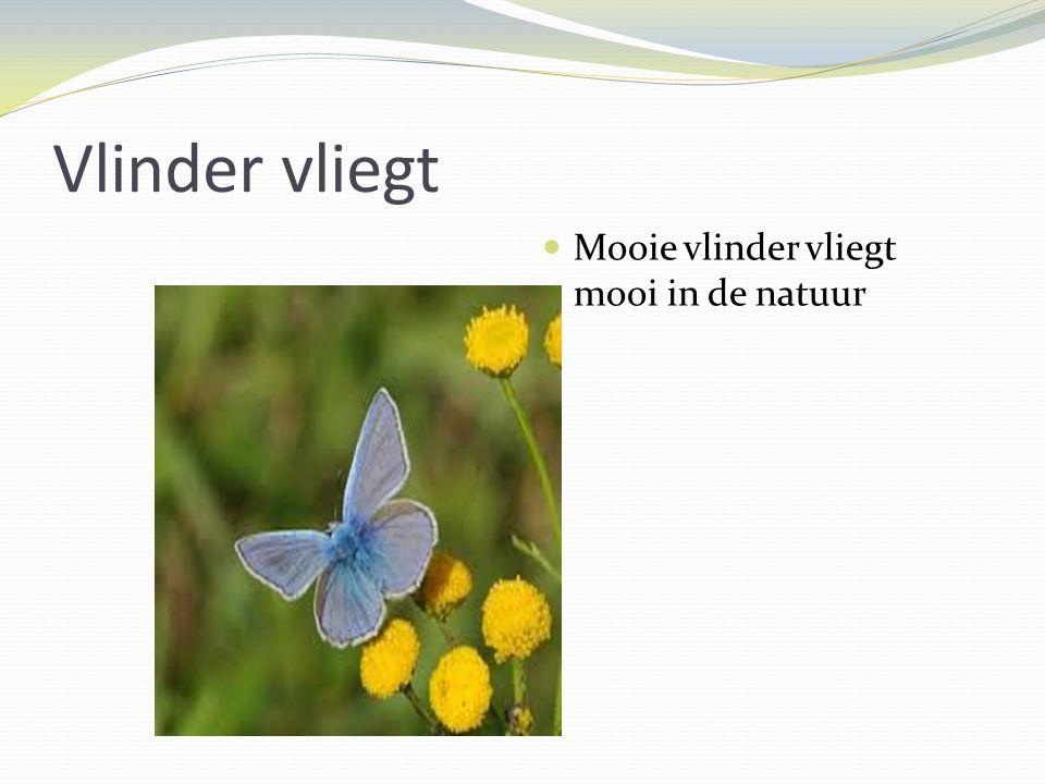 Vlinder vliegt Mooie vlinder vliegt mooi in de natuur